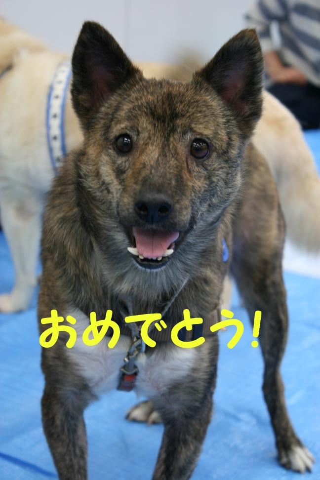 8/24 来夢里親会_f0242002_216192.jpg