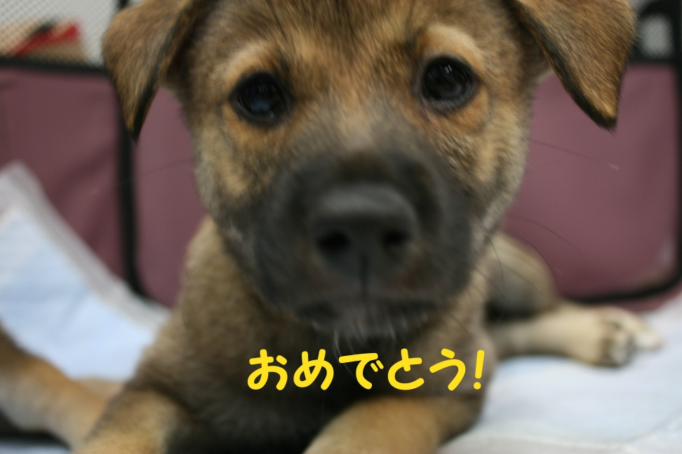 8/24 来夢里親会_f0242002_2164722.jpg