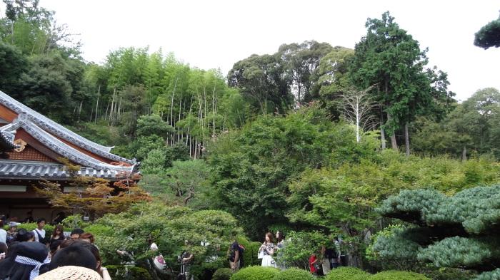 京都三日目(観光!)_b0290816_11151053.jpg