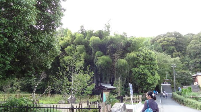 京都三日目(観光!)_b0290816_11154399.jpg