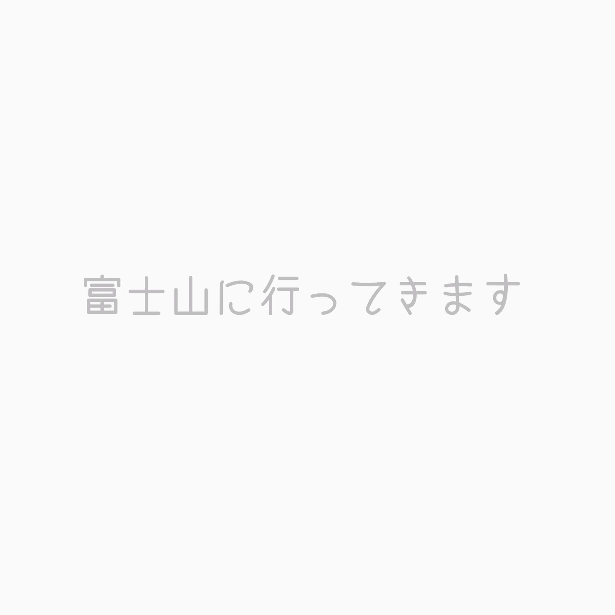 トレイルランニングに挑戦 その4 富士登山_c0222817_07423387.jpg