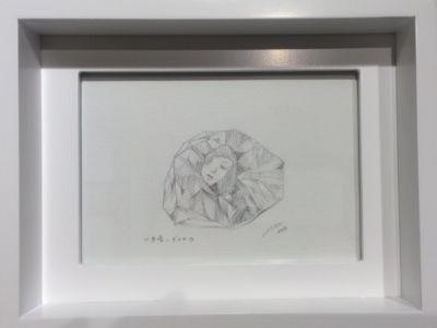 個展「首を傾げた化石」開催中_c0170930_1371117.jpg