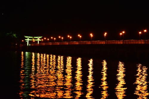 我が街の夜景_d0285540_6593295.jpg