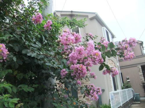 関東大震災の記憶_f0253572_21130312.jpg