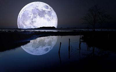 月光第二楽章_f0182936_22443056.png
