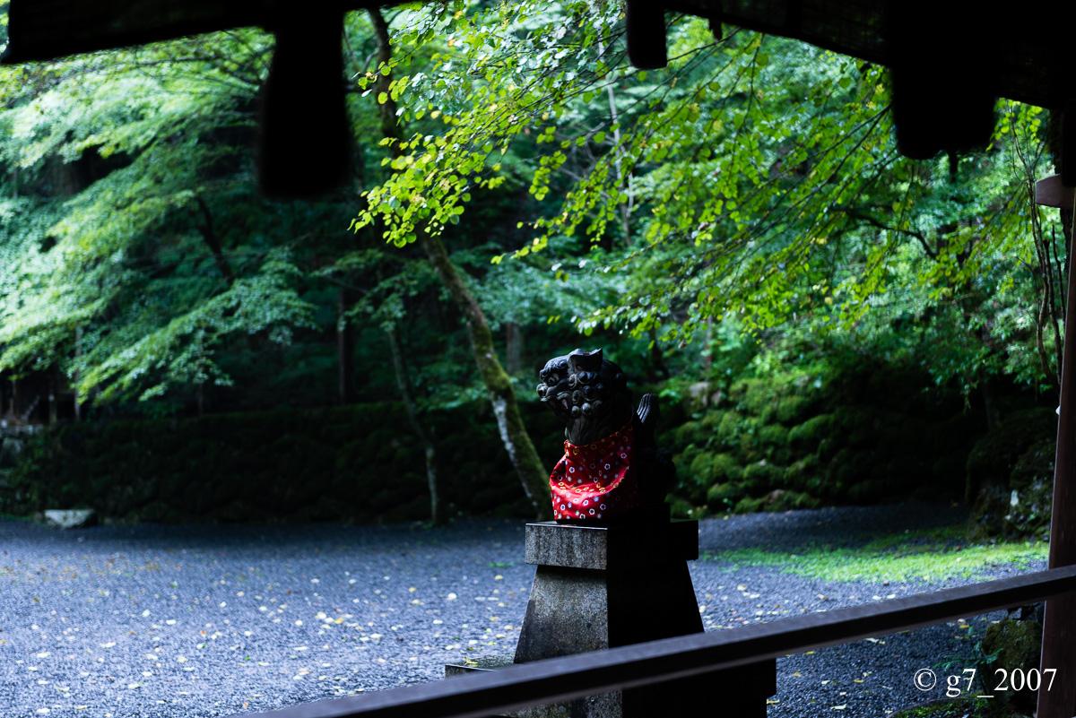 貴船神社 〜3〜_f0152550_16373220.jpg
