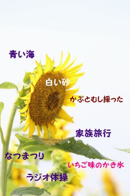 a0226853_17414583.jpg