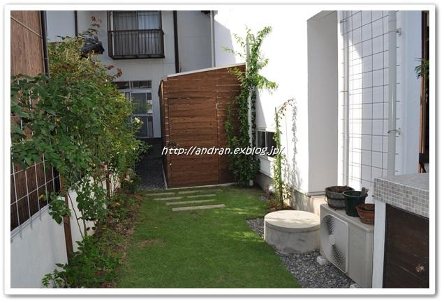 井戸のある庭を考える・・・・その2_c0176271_23222482.jpg