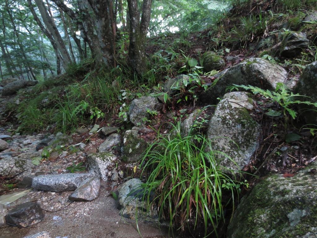 道志村の山伏オートキャンプ場_c0310571_06363602.jpg