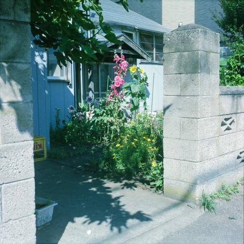 隣に庭はとても気になる_c0170584_17565536.jpg