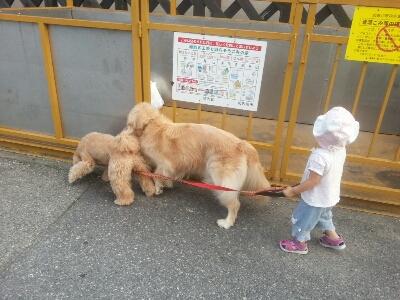 お散歩_e0136815_16425754.jpg
