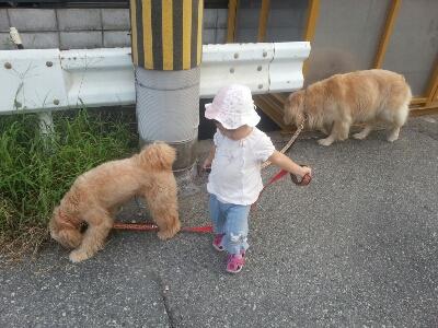 お散歩_e0136815_16454485.jpg