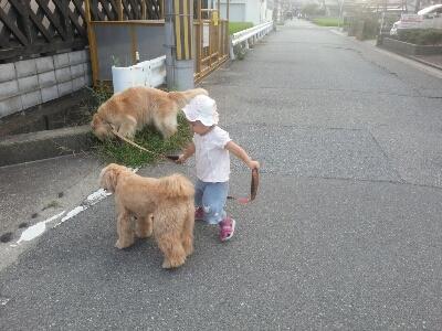 お散歩_e0136815_16461412.jpg