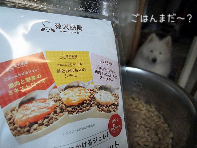 【モラタメ】 愛犬厨房 『おためしBOX』_c0062832_7231953.jpg