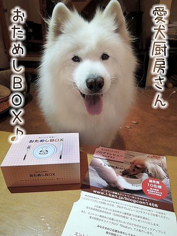 【モラタメ】 愛犬厨房 『おためしBOX』_c0062832_723292.jpg