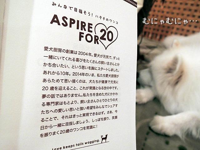【モラタメ】 愛犬厨房 『おためしBOX』_c0062832_7242999.jpg