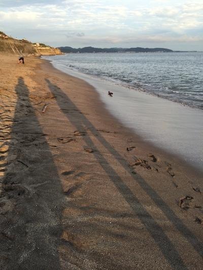 七里ヶ浜を歩きながら_c0113755_03030629.jpg