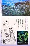 画室1と画室2と小画箱_e0045977_21172761.jpg
