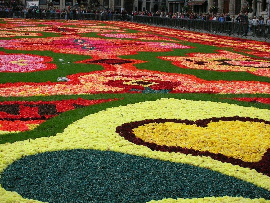 花のじゅうたんビエンナーレ_f0213189_1721534.jpg