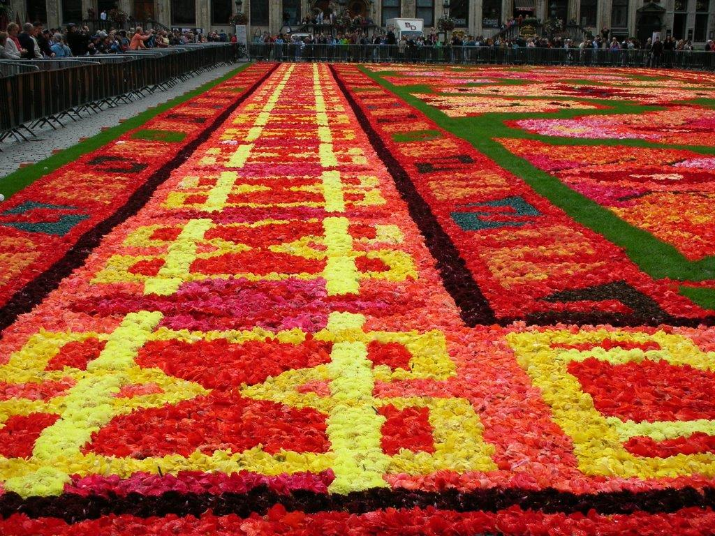 花のじゅうたんビエンナーレ_f0213189_17221173.jpg