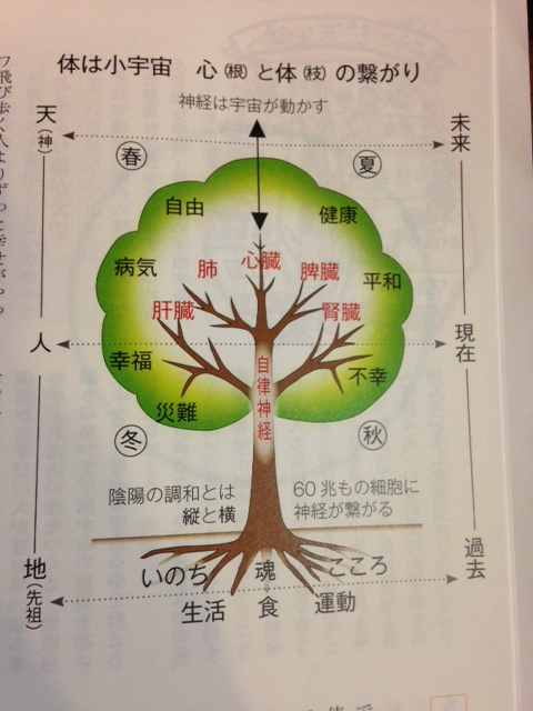 東城先生講演会に行ってきました。_e0177713_17111970.jpg