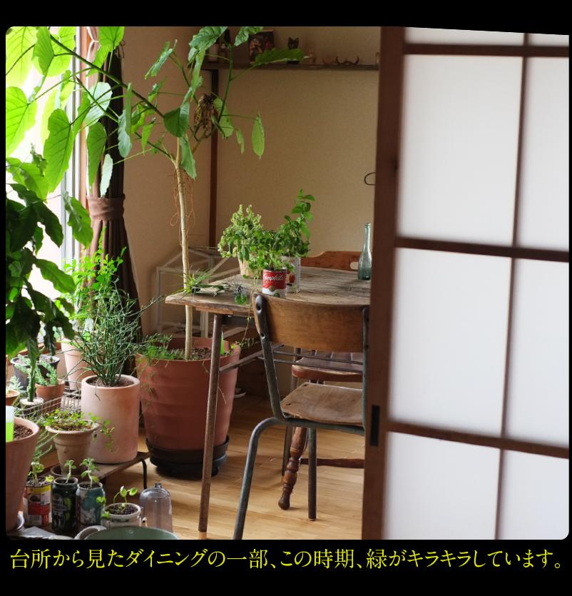 b0344119_21570751.jpg