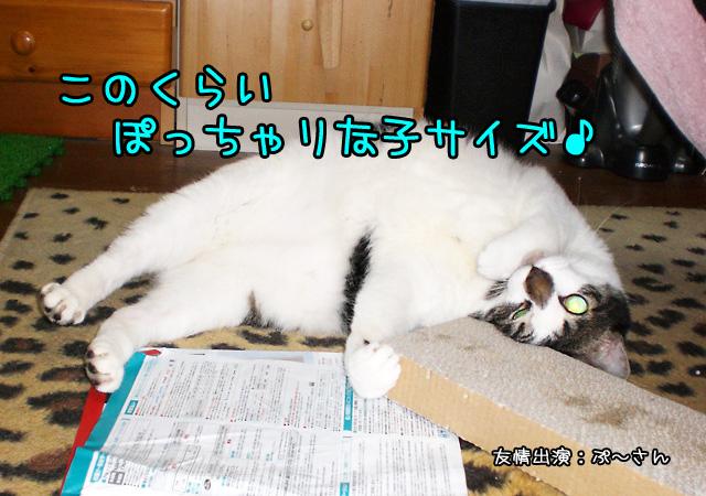 d0156981_19544784.jpg