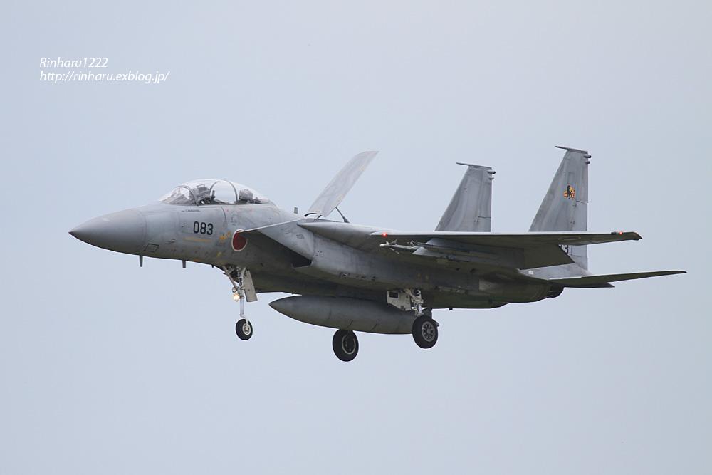 JASDF 2014.7.23 新田原基地【外撮り-その1】_f0250322_21351994.jpg
