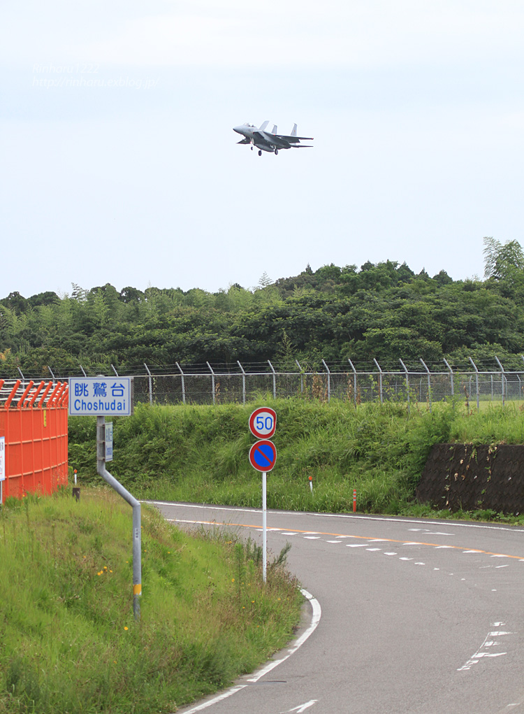JASDF 2014.7.23 新田原基地【外撮り-その1】_f0250322_21353325.jpg