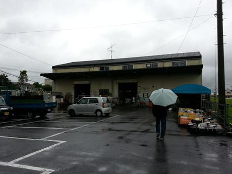 8月 徳島編_c0226146_16462361.jpg