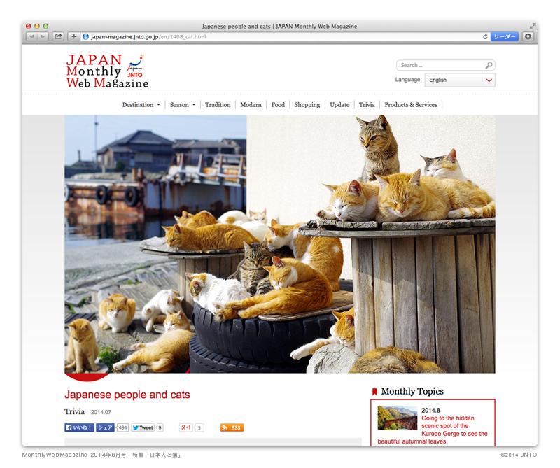 日本政府観光局「日本人と猫」特集にのら猫クロッチ参上!_f0193056_11324685.jpg