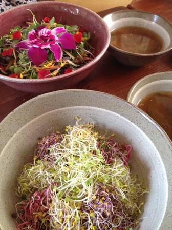 ソウルでお花のピビンパッを食べる_b0060363_2231082.jpg