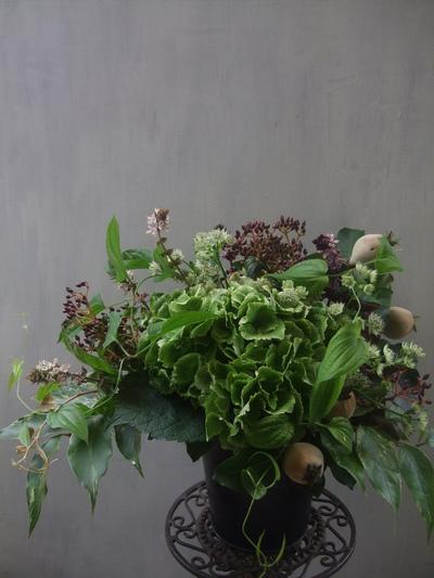 オークリーフ(秋色紫陽花と季節の花のアレンジメントⅡ  )_f0049672_1361916.jpg
