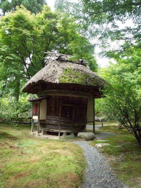 京都から・・・ただいま!_e0040673_18244360.jpg