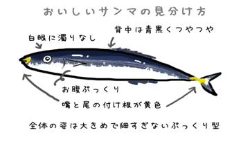 秋刀魚がやはり旨し。_d0096499_1345661.jpg