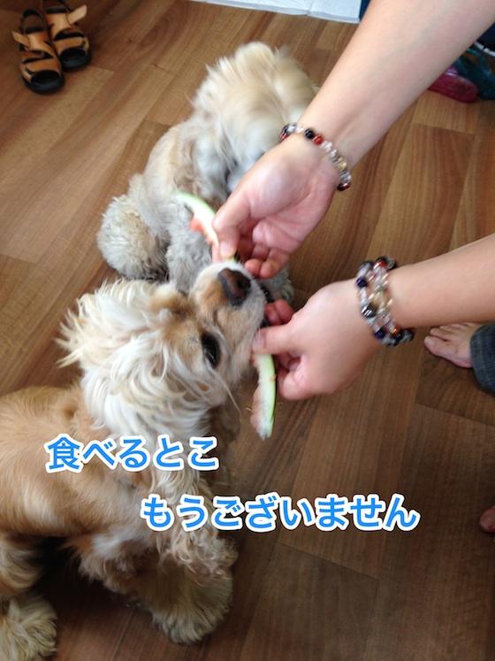 b0067012_01574.jpg