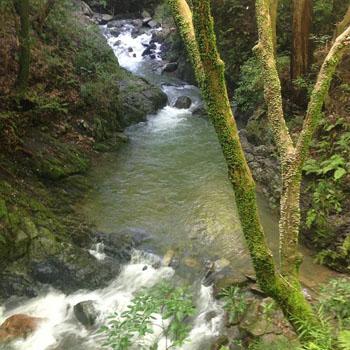 お休み日記 - waterfall_c0168222_19462836.jpg