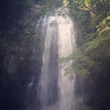 お休み日記 - waterfall_c0168222_2093772.jpg