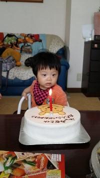 一歳の誕生日!!_e0176128_12475458.jpg