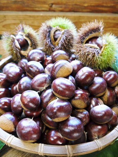 利平栗 栗の王様「利平栗」 完全無農薬・完全無化学肥料で虫食いの葉っぱで順調に育ってますよ!_a0254656_18414449.jpg