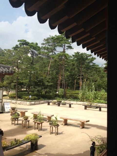 ソウルでお花のピビンパッを食べる_b0060363_165502.jpg