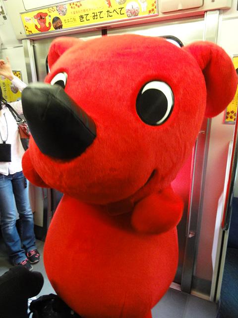 臨時列車 チーバくんトレインに乗ろう! (8/31)_b0006870_22171972.jpg