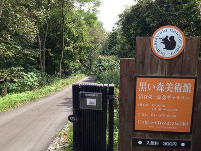 黒い森美術館にお散歩…_d0214172_1812345.jpg