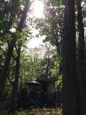 黒い森美術館にお散歩…_d0214172_18124073.jpg