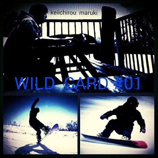 WILD CARD #01 _b0203378_18304817.jpg