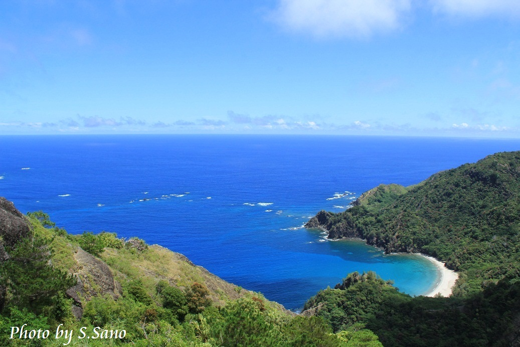 小笠原諸島の旅(2014)_b0348205_18563722.jpg
