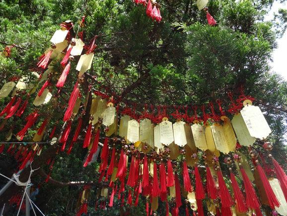 2014年7月 台湾 猫空へおでかけ その6編♪_d0219834_2251273.jpg