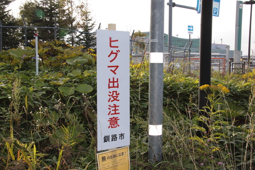釧路空港クマ騒動 9月4日_f0113639_16193581.jpg