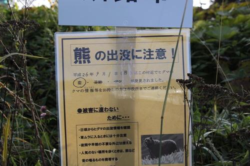 釧路空港クマ騒動 9月4日_f0113639_1620331.jpg