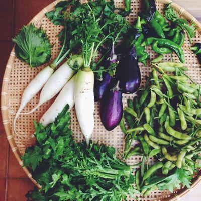日本の野菜_a0169647_5255288.jpg